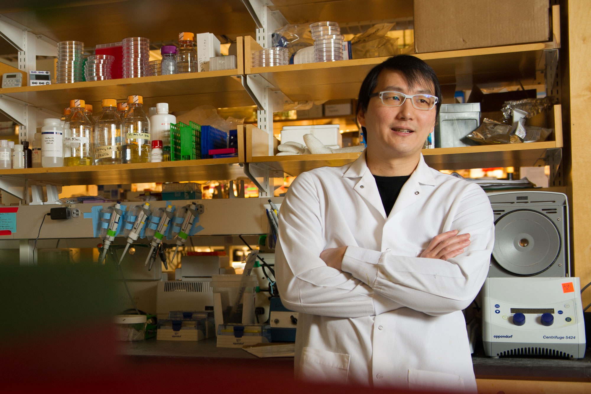 Timothy Lu '03, MNG '03, PhD '08, professor of electrical engineering