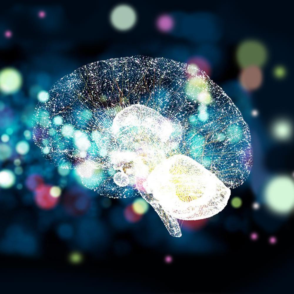Image of a stylized brain illustration on a dark, amorphous background.